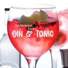 I'm Feeling Supersonic Grab Me A Gin and Tonic Glass Gift