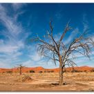 Wandbild  »Namib Wüste«, Artland, Motiv