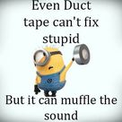 Pinterest Funny Quotes
