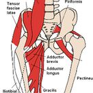 Is Your IT Band Causing That Pain On the Outside of Your Knee