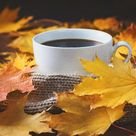 Autumn, fall leaves, hot cup of coffee and a warm scarf on wooden table background.