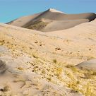 Mojave National Preserve: Play in the dunes