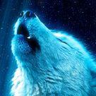 Free Wolf Heaven phone wallpaper by lemueldiaz