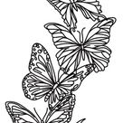 Flight & Dark Butterflies - Vertical Border | Urban Threads: Unique and Awesome Embroidery Designs