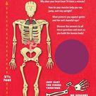 Build The Human Body - Kit - Default Title