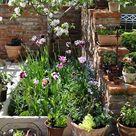 23+ Outstanding Flower Garden Ideas 2019 #flower #garden #Ideas #ForBeginners #Design #Wedding