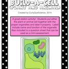 Build A Cell Activity Plant and Animal