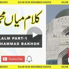 Buy Pakistani Urdu Digests and Magazines in PDF