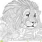 Zentangle stylized lion stock vector. Illustration of africa - 71319173