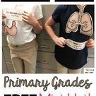 FREE kindergarten senses science unit for primary grades