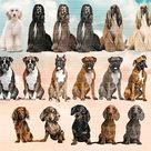 Dog Breeds sitting in front Clipart
