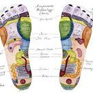 Foot Reflexology Chart  Reflexology Map  Acupressure Chart  | Etsy