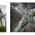 Architecture vs UX