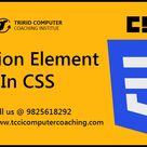 Position Element in CSS - tccicomputercoaching.com