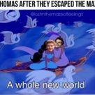 Newtmas Pictures & Memes - Magic Carpet Ride