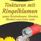 Ringelblumentinktur   natürliche Hilfe bei Entzündungen, Übelkeit und Wunden