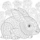 Stylized baby rabbit and cornflowers. Freehand sketch for adult...