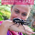 20 adventurous things to do in Bali