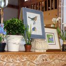 Five Ways to Use Birds, Eggs, & Nests in Spring