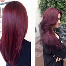 Plumberry Hair Color