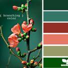 Color Palette Green