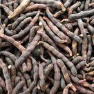 Selim Pepper/ Grains of Selim/ Uda Pepper/ Negro Pepper/ African Spices/ Hwentia