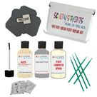 AUDI S8 HELLELFENBEIN L115 Touch Up Paint Repair Detailing Kit