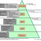 Understanding All Nursing Degree Types Overview | NurseJournal