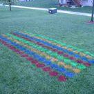 Lawn Twister