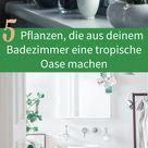 5 Pflanzen machen Badezimmer zu tropischen Oasen   Skybad.de