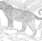 Ausmalbild: Jaguar | Ausmalbilder kostenlos zum ausdrucken
