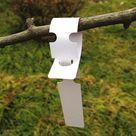 200 weiße Kunststoffetiketten für Pflanzen und Bäume zum Aufhängen von 2 x 20 cm mit großer weißer Schreibfläche