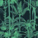 Palm Wallpaper - Sample