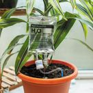 Plant Life Support Houseplant Watering Device