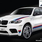 2014 BMW X6 M Design Edition  Top Speed