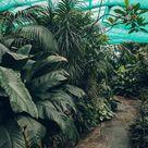 The David Welch Winter Garden, Duthie Park in Aberdeen — Scotland — Haarkon
