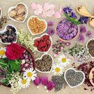 Aromatherapy Essential Oil - Sage - 10ml