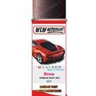 Bmw 7 Series Turmalin Violet 897 Car Aerosol Spray Paint Rattle Can   Single Basecoat Aerosol Spray 400ML