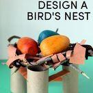 Bird Nest STEM Challenge