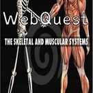 Skeletal and Muscular Systems Webquest