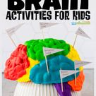 Parts of the Brain Activity for Kids, Brain Diagram, and Worksheets for Kids