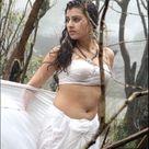 Telugu Actress Hot Show Navel in White Saree