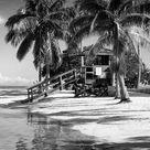 'Paradisiacal Beach with a Life Guard Station - Miami - Florida' Photographic Print - Philippe Hugonnard | Art.com