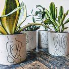 Brisa Concrete Cement Succulent Mini Pot Planter   Silhouette Concrete Planters Set