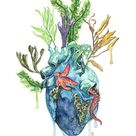 Watercolor Painting, Anatomical Heart, Anatomical Heart Print, Heart, Human Heart, Ocean Heart, Ocean Painting, Sea,Print title