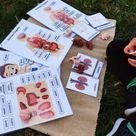 The Human body * human organs * kids anatomy * human body figurines * Homeschool * Montessori anatomy * body parts * Kids Birthday gift