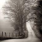 Sepia photography farmhouse art landscape photography   Etsy