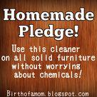 Homemade Pledge