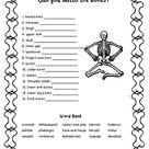 Match Those Bones Worksheet