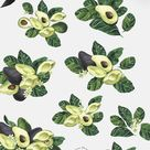 NATURAL STUDY: avocado watercolor set ll - floral clipart - avocado clipart - blossom flowers tree f